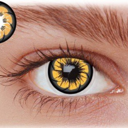 Brune kontaktlinser OC2BR