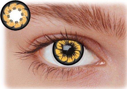 Image of   Brune kontaktlinser OC2BR